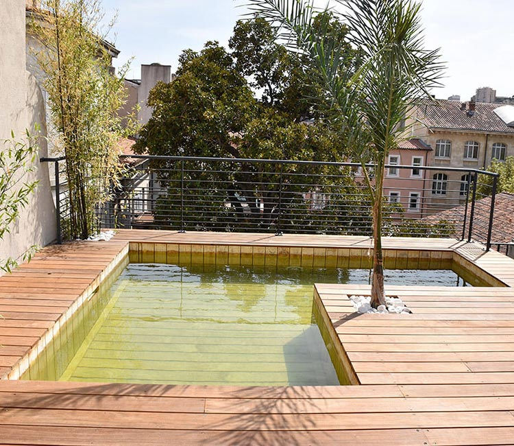 option piscine nage a contre courant
